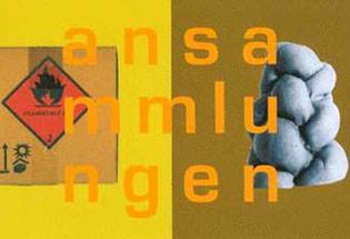 André Büchi / Daniel Manser: Ansammlungen - Kunsthalle Arbon